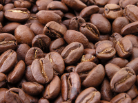 The moisture contend of coffee ist a very costly factor